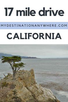 17 Mile Drive: O Caminho de Carro entre Monterey e Carmel