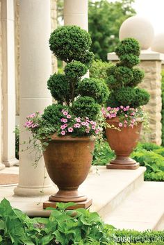Planters from Landfare Ltd. welcome guests to a home. #housetrends