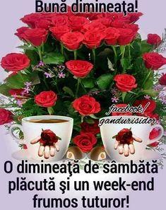 Good Morning, Day, Buen Dia, Bonjour, Good Morning Wishes