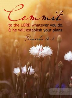 The Wisdom From Proverbs: PROVERBS 16:3