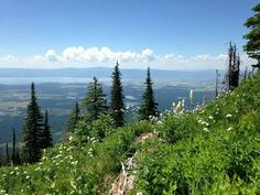 Great sight seeing, hiking and biking in the summer, great skiing in the winter. Flathead Lake is in the background. Flathead Lake, Big Mountain, Places To Travel, Montana, Skiing, Backyard, Winter, Summer, Traveling