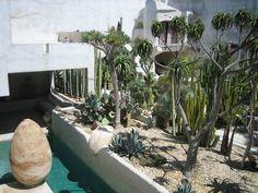 House Tour: Philip's Indiana Jones Oasis