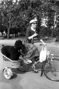 Eine Frau transportiert ihren Pudel in einem Korb auf dem Fahrrad. — Quelle: Wilhelm Hauschild
