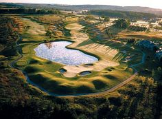 Get in a Few Practice Swings at These Excellent Michigan Golf Schools