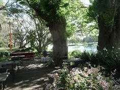 Netherby House gardens  Kempsey  NSW