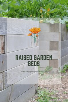 Raised garden beds are a great alternative to growing in places without soil. This guide will give you 8 creative solutions to grow on balconies, allyways, and other places that need a creative solution to gardening. Building Raised Garden Beds, Raised Beds, Some Ideas, Balconies, Raising, Alternative, Home And Garden, Gardening, Places