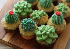 Succulent に対する画像結果