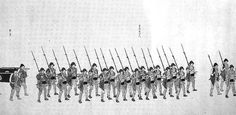 Troops of the Takeda domain during the second Choshu expedition. Cherry Blossom Japan, Cherry Blossoms, Guerra Boshin, Boshin War, Edo Period, Troops, Samurai, Two By Two, Military