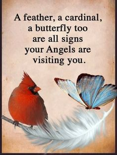 And sometimes bluebirds too! Spiritual Quotes, Positive Quotes, Meaningful Quotes, Inspirational Quotes, Grief Poems, Loved One In Heaven, Sympathy Quotes, Sympathy Cards, Miss You Dad