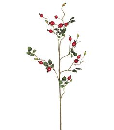 32'' Rosehip Spray  Red32'' Rosehip Spray  Red,