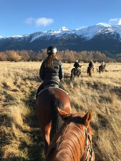 Cute Horses, Beautiful Horses, Foto Cowgirl, Horse Adventure, Horse Pictures, Horse Photos, Horse Wallpaper, Horse Riding, Trail Riding Horses