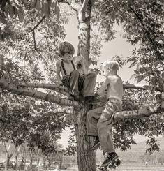 """July 1942. Klamath Falls, Oregon. """"Boys in city park on a Sunday afternoon."""" Photo by Russell Lee for the Office of War Information."""