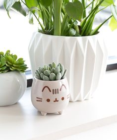 Shop for Pusheen plush, clothing, and more- including products EXCLUSIVE to Pusheen Shop! Pusheen Cute, Kawaii Room, Pencil Cup, Cute Room Decor, My Room, Decoration, Cool Things To Buy, Planters, Christmas Gifts