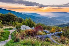 """""""Late Afternoon in Shenandoah"""" (Skyline Drive), John Thomas Virginia, New Warriors, Fall Is Coming, Shenandoah National Park, Donate Now, Blue Ridge Mountains, Acre, National Parks, Beautiful Places"""