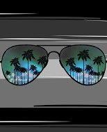 Sun Glasses Beach Blanket