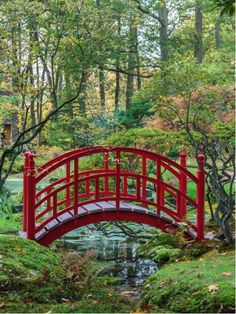 Red Japanese bridge from $39.99 | www.wallartprints.com.au #AsianPhotography #TravelPhotography