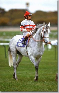 Cozzene at the Breeders' Cup 1985 turf champion owned by John Nerud and trained by his son Jan Nerud