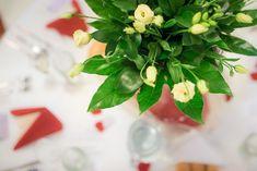Dekorace na stolech. Table Decorations, Plants, Furniture, Home Decor, Homemade Home Decor, Home Furnishings, Plant, Interior Design, Home Interiors