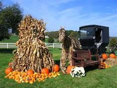 Amish Country in the fall