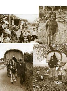 Romany Gypsy Caravan Waggon Vanner Horses
