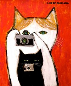 photographie de chat pepeart - Cats in Color - I Love Cats, Crazy Cats, Cool Cats, Art And Illustration, Chat Web, Gatos Cats, Photo Chat, Cat Photography, Cat Drawing