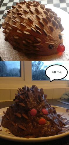 DIY Fails Expectations vs Reality - 100 Pics – Funnyfoto - Page 65 Baking Fails, Hedgehog Cake, Lamb Cake, Food Fails, Fail Nails, Funny Cake, Cake Wrecks, Food Humor, Cooking Humor