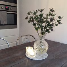 Kitchen flowers iittala linnekaraff