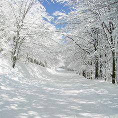 okay, i like winter too