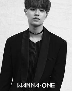 Wanna One (워너원) 'Daehwi (대휘)'
