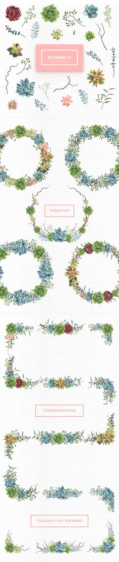 Watercolor Succulents Set by Kotulska on @creativemarket