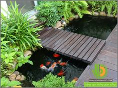 wasserspiel garten thit k sn vn p Fish Pond Gardens, Small Water Gardens, Koi Fish Pond, Fish Ponds Backyard, Backyard Water Feature, Koi Ponds, Koi Pond Design, Garden Design, Vertikal Garden