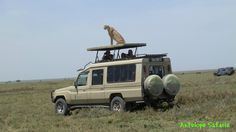 www.antelopesafaris.com Tour Guide, Recreational Vehicles, Safari, Van, Tours, Vans, Campers, Single Wide