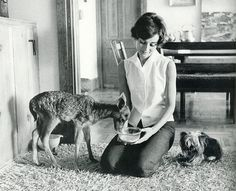 #AudreyHepburn at home with her dog and pet deer