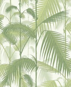 Palm Jungle by Cole & Son. The original Cole & Son Palm Leaves print has been multi layered to create a dense jungle of foliage. White Wallpaper, Wallpaper Roll, Palm Wallpaper, Botanical Wallpaper, Pattern Wallpaper, Tropical Wallpaper, Forest Wallpaper, Modern Wallpaper, Wallpaper Toilet