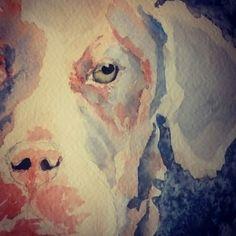 Pound dog. Watercolour. By Catherine Lane.