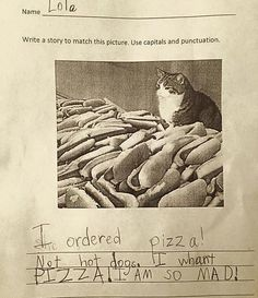 Kid's Homework. I ordered pizza! Not hot dogs. I want PIZZA! I am so mad! ~ I'd be too kitty