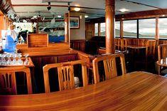 Galapagos Islands, Tour Guide, Ecuador, Html, Tours, Travel, Home Decor, Cheap Flights, Cruises