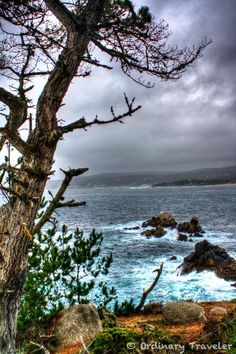 Point Lobos - Carmel- I have been here and it really does look this gorgeous in real life.