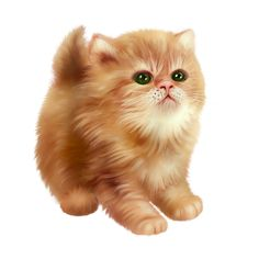 Cute Animals Images, Cute Animal Pictures, Animals And Pets, Baby Kittens, Cats And Kittens, Pretty Cats, Cute Cats, Kitten Wallpaper, Kitten Cartoon