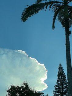 *Momentos em Cliques*: Céu e ... Clouds, Outdoor, Outdoors, Outdoor Games, Outdoor Life, Cloud