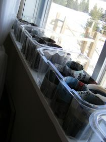 The Complete Guide to Imperfect Homemaking: Newspaper Seed Starting Pots