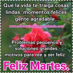 Que la vida te traiga cosas lindas, momentos felices, gente agradable... Problemas pequeños y soluciones grandes, motivos para sonreír y ser feliz. Happy Moments, Good Night, Happy Friday, Good Morning Greetings