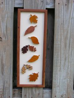 Falling Leaves  Autumn in the USA by AThirdLife on Etsy, $22.00