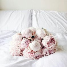 Every day has good morning if you have peonies. #homedecor #homesweethome #bedroom #flowers #peonies #goodmorning #fabfashionfix