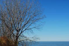 https://flic.kr/p/AewF2b   Lakefront Nature Preserve