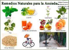 Remedios naturales para la andiedad