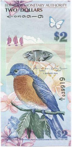 2 Dollars 2009 (Hüttensänger)