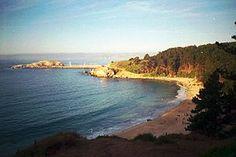 Algaroobo, beach el Canelo
