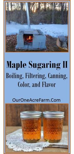 Make your own maple syrup! Part explained how to identify the trees and collect the sap, and this part details how to boil off the sap, and how to filter and can the syrup. Also covers info on color and flavor. Food Storage, Sugaring, Living Off The Land, Wild Edibles, Preserving Food, Canning Recipes, The Ranch, Survival Skills, Survival Food