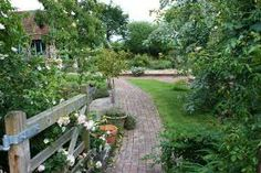 my garden - Google Search